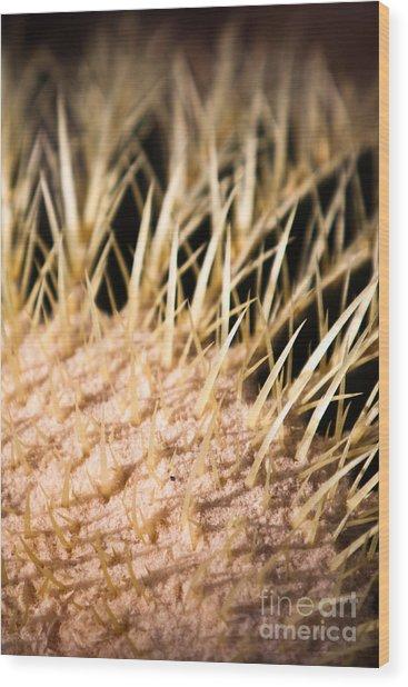 Cactus Skin Wood Print