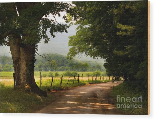 Wood Print featuring the photograph Cades Cove Loop by T Lowry Wilson