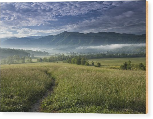 Cades Cove Meadow Wood Print