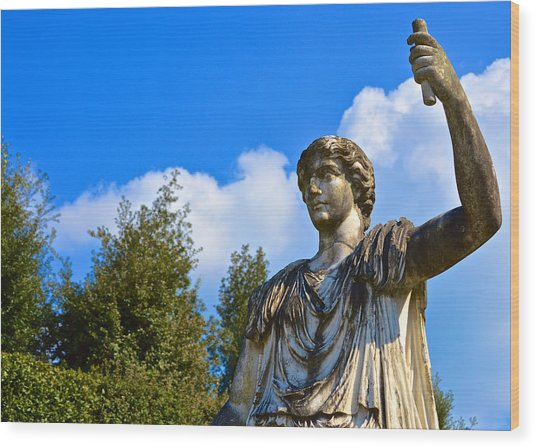Caesar On Blue Sky Wood Print