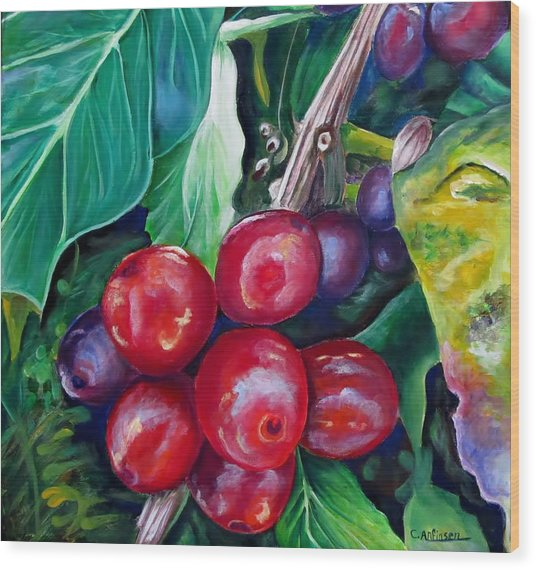 Cafe Costa Rica Wood Print