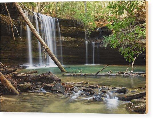 Cainey Creek Falls Wood Print by Scott Moore