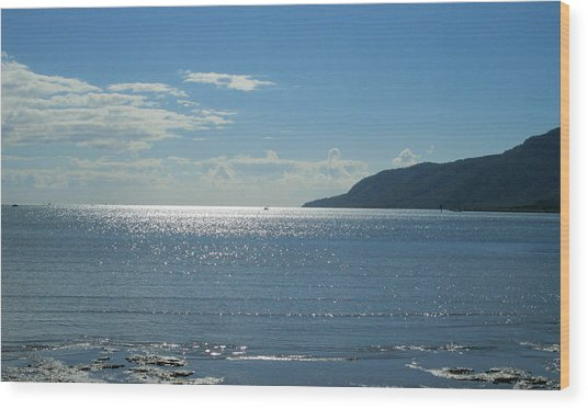 Cairns Waterfront Wood Print