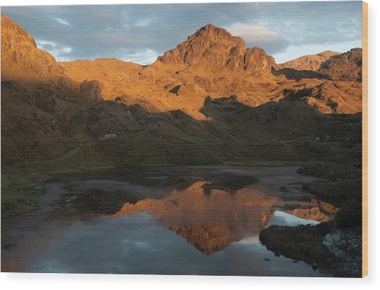 Cajas National Park (3000-4,400m Wood Print by Pete Oxford