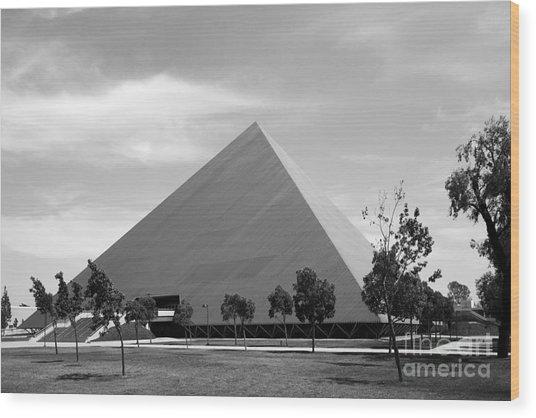 Cal State University Long Beach Walter Pyramid Wood Print by University Icons