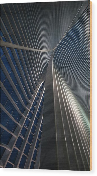 Calatrava Lines At The Blue Hour Wood Print by Jef Van Den