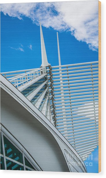 Calatrava Point Wood Print