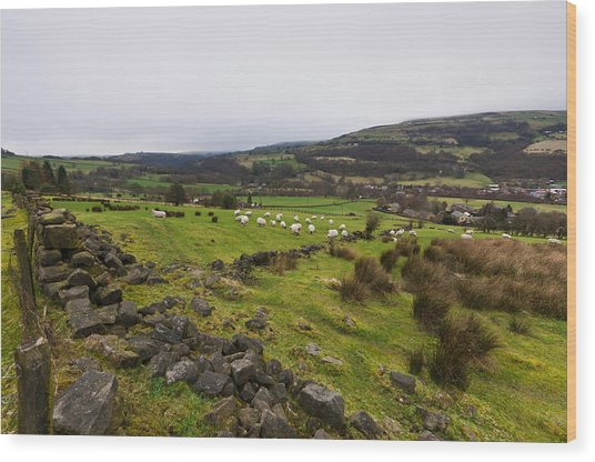 Calder Valley Wood Print