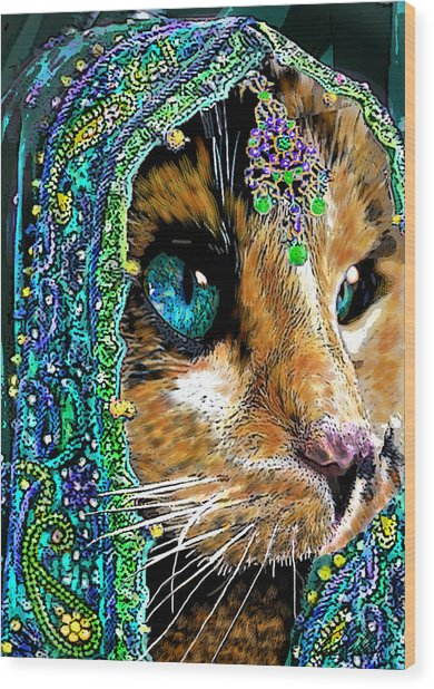 Calico Indian Bride Cats In Hats Wood Print