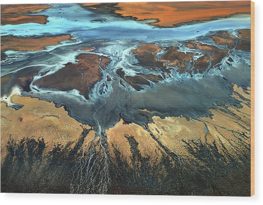 California Aerial - The Desert From Above Wood Print by Tanja Ghirardini