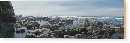 California Beach 1 Wood Print