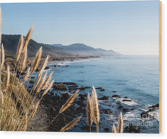 California Coast - 521 Wood Print by Stephen Parker
