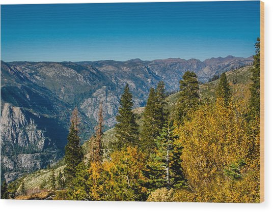 California Fall Wood Print
