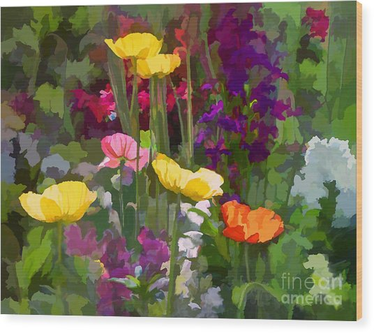 California Poppies Wood Print