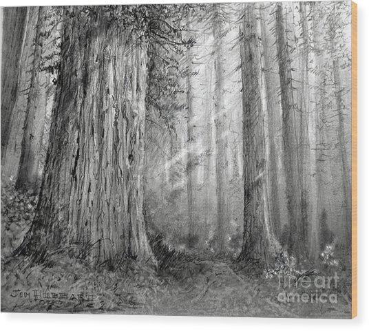 California Redwood Wood Print