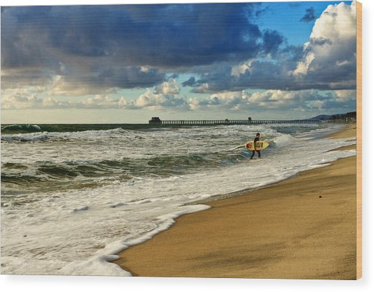 California's Stormy Surf  Wood Print by Donna Pagakis