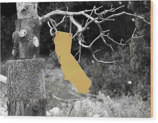 Cali's Hanging Out Wood Print by Luna Curran