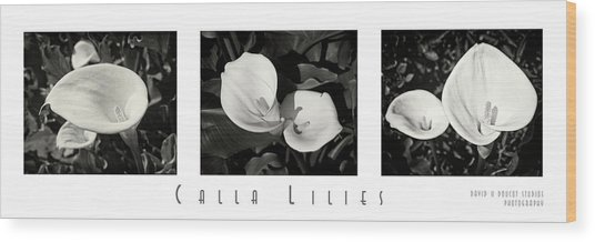 Calla Lilies Horizontal With Title And Nameplate Wood Print