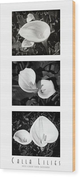 Calla Lilies Vertical With Title And Nameplate Wood Print