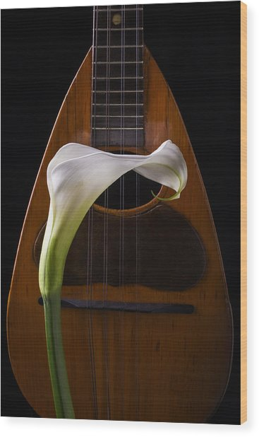 Calla Lily And Mandolin Wood Print