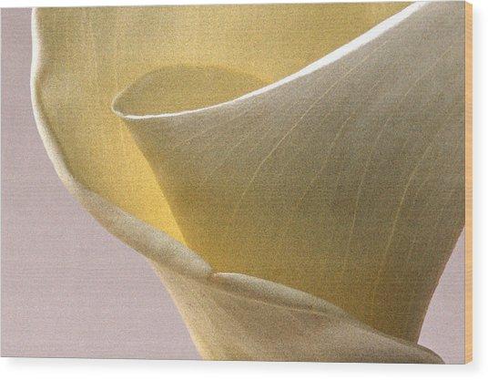 Calla Lily Xii Wood Print