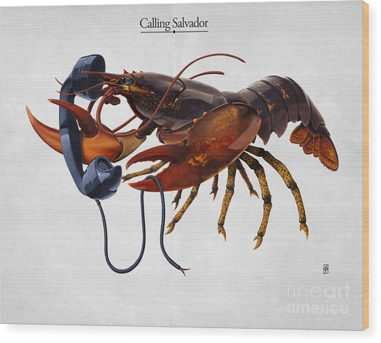 Calling Salvador Wood Print
