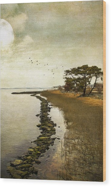 Calm At The Waters Edge Wood Print