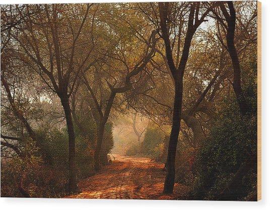 Calm Nature As Fantasy  Wood Print