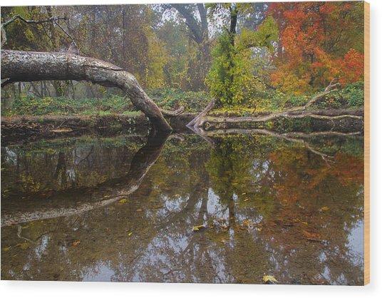 Calm On Big Chico Creek Wood Print