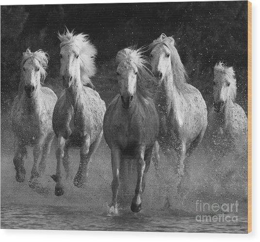 Camargue Horses Running Wood Print