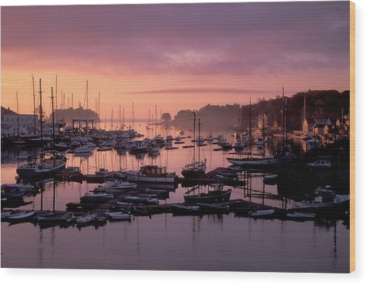 Camden Harbor Wood Print