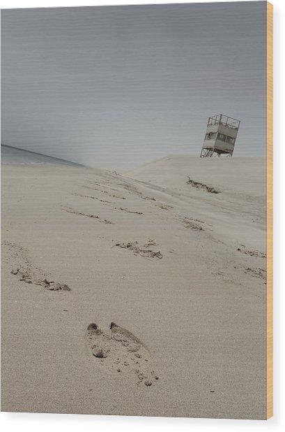 Camel Toe Wood Print by Charlie Tash