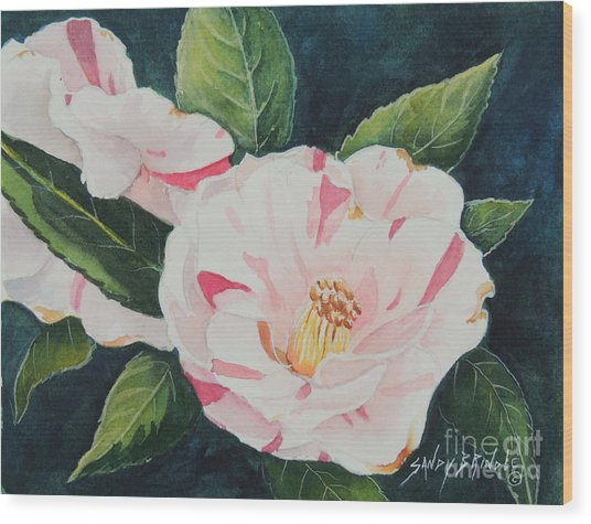 Camellia ...sold  Wood Print