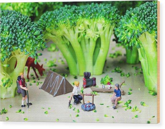Camping Among Broccoli Jungles Miniature Art Wood Print