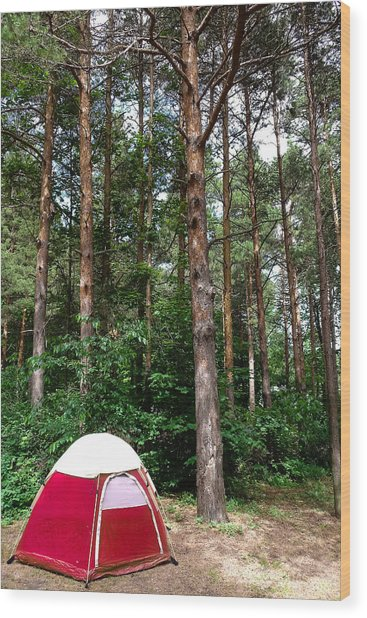 Campsite Near Holland State Park Wood Print