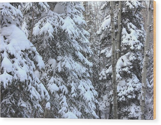 Canadian Forest - Winter Snowfall Wood Print