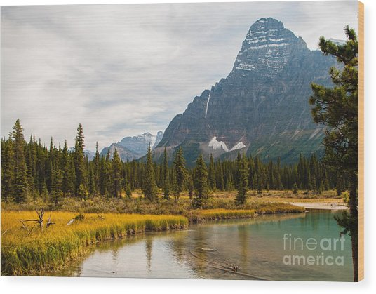 Canadian Rockies 2.0604 Wood Print by Stephen Parker
