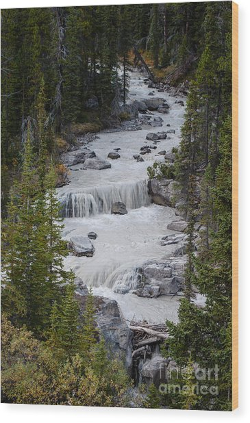 Canadian Rockies 2.0608 Wood Print by Stephen Parker
