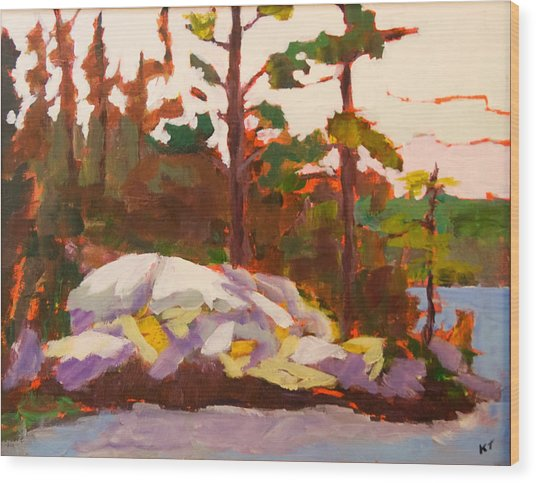 Canadian Shield Haliburton Wood Print by Keith Thirgood