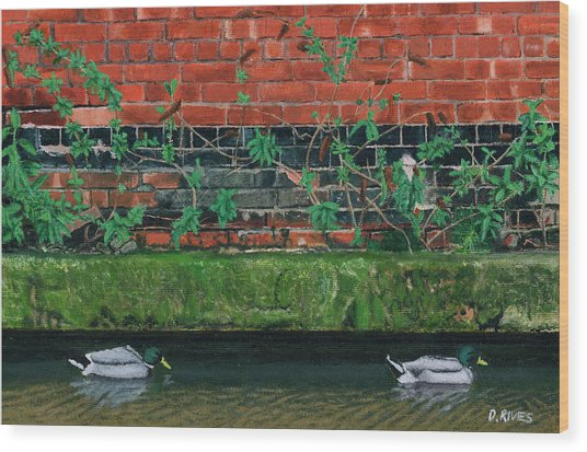 Canal Ducks Wood Print
