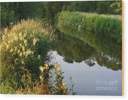 Wood Print featuring the photograph Canal Reflections by Jeremy Hayden