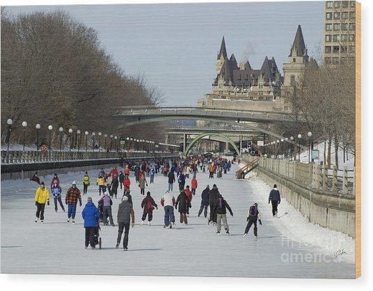 Canal Skate II Wood Print