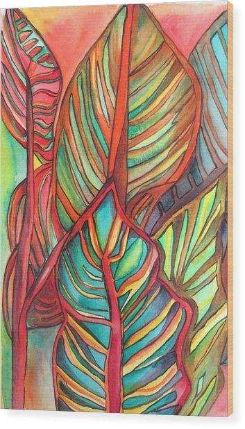 Canna Leaves Wood Print by Sacha Grossel