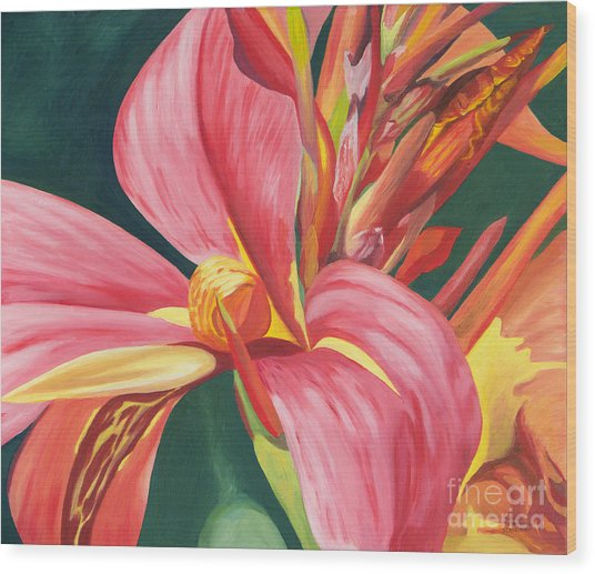 Canna Lily 2 Wood Print