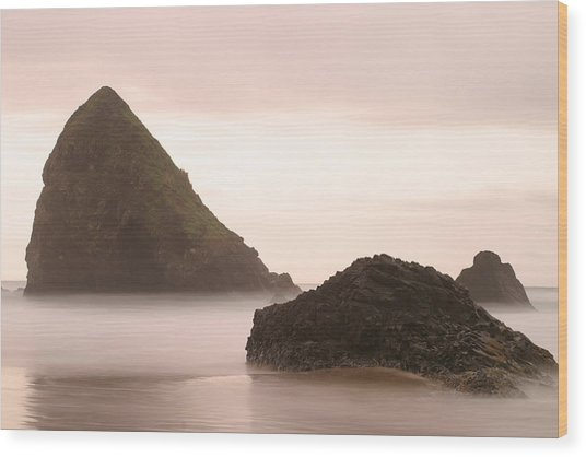 Cannon Beach - 2 Wood Print by Maxwell Amaro