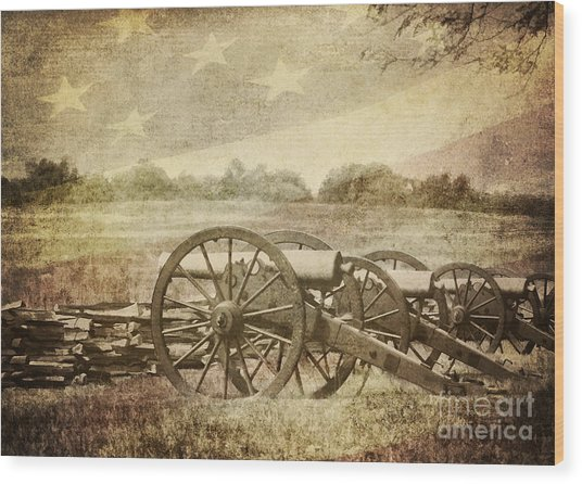 Cannons At Pea Ridge Wood Print