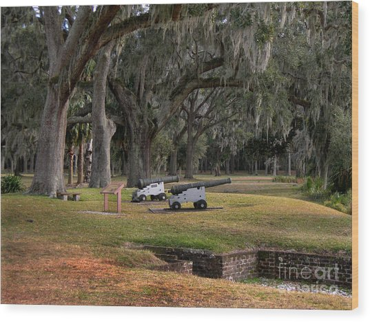 Canons Of Fort Frederica Georgia Wood Print