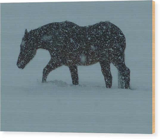 Can't..wait..till..spring..  Wood Print by Gerry Childs