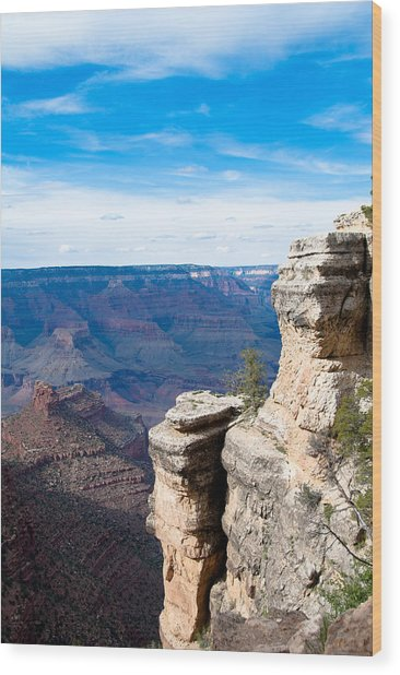 Canyon For Miles Wood Print by Nickaleen Neff