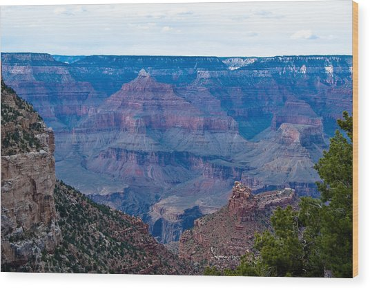 Canyon In View Wood Print by Nickaleen Neff